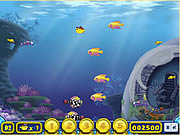 Click to Play Growing Fish