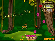 Click to Play Flower Pocket