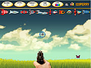 Click to Play Butterfly Shoot