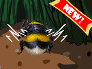 Click to Play Honey Bee Buddy